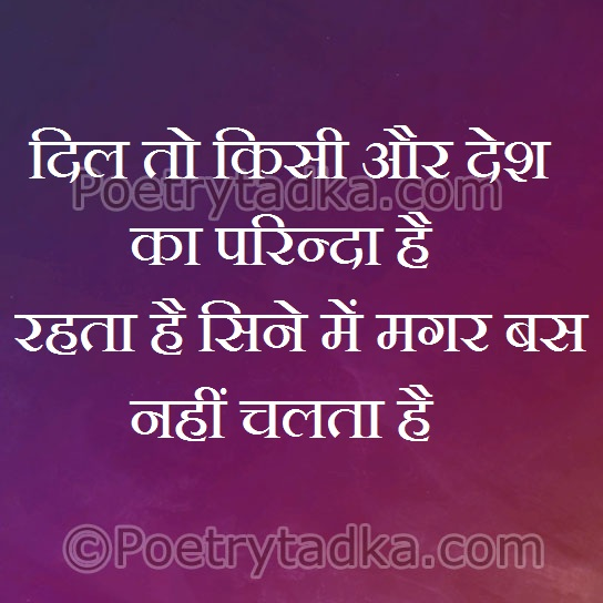 friendship quotes in hindi walpaper image photu dil to kisi aur desh ka prinda