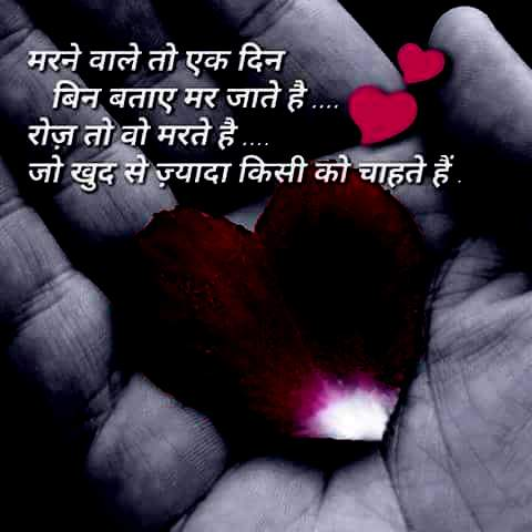 laif quotes wallpaper whatsapp profile image photu in hindi mrne wale ek din mr jate hai roz khud