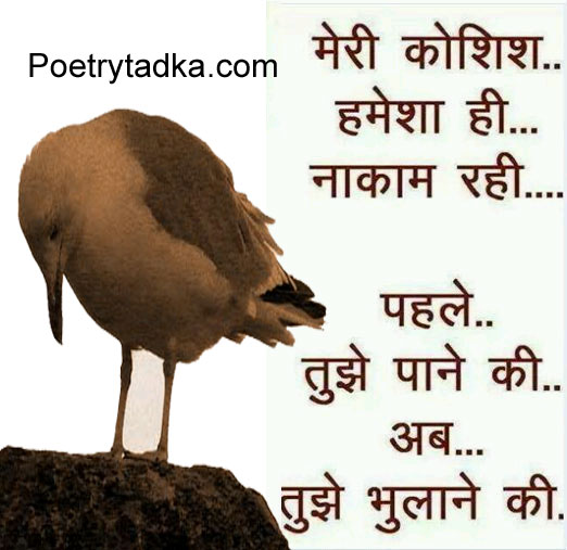 Koshish Hindi Shayari