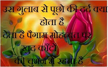 whatsapp status wallpaper whatsapp profile image photu in hindi dard gulab paigam mohabbat